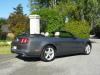 Mustang GT 5.0 Convertible
